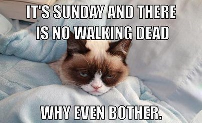 Grumpy Cat mid season break The Walking Dead - 8012648448