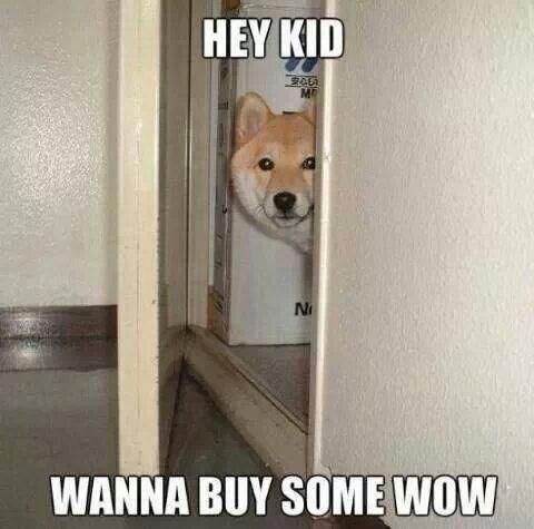 WoW doge - 8012698624