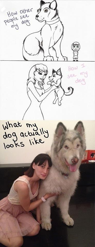 dogs comics huge funny - 8012861696