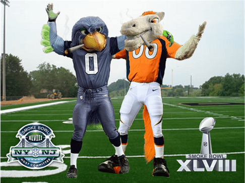 seattle seahawks XLVIII super bowl Denver Broncos - 8013268992