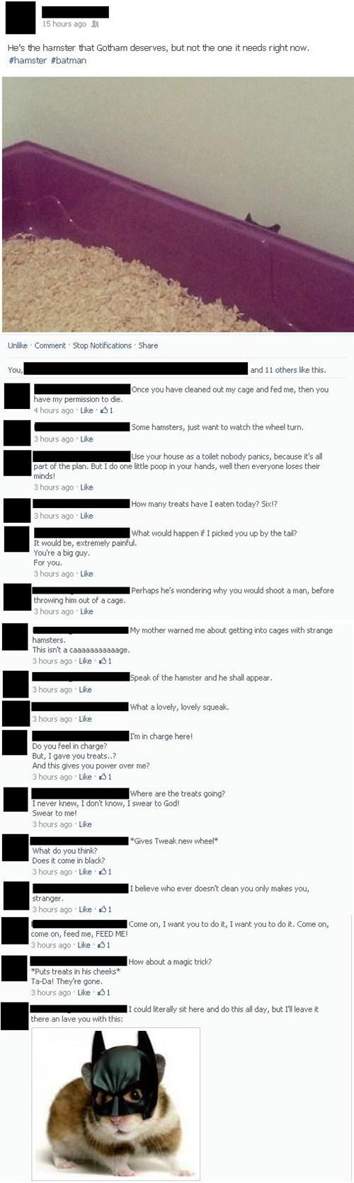 puns hamsters facebook batman animals - 8013289216