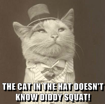 THE CAT IN THE HAT DOESN'T KNOW DIDDY SQUAT!