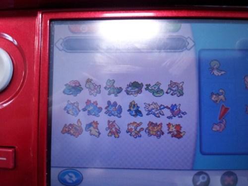 Pokémon starters - 8013440512