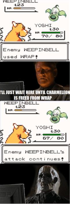 Pokémon forever wrap gen 1 - 8013869312