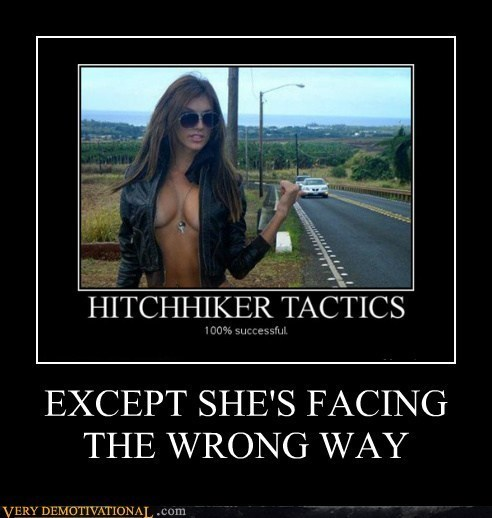 Sexy Ladies funny idiots hitchhikers - 8015444480