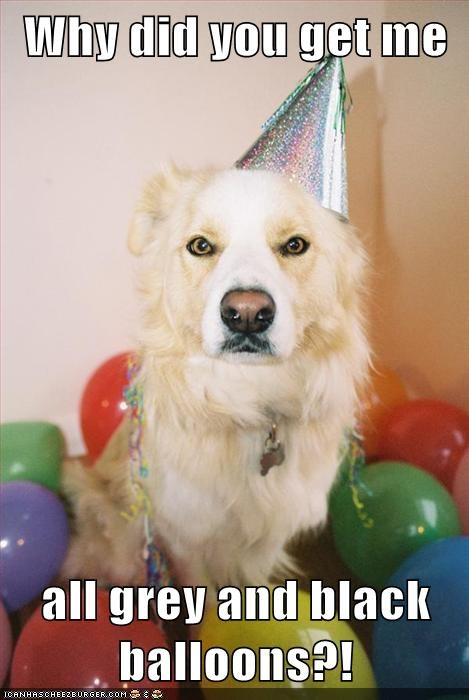 dogs,birthday,Balloons,colorblind,funny
