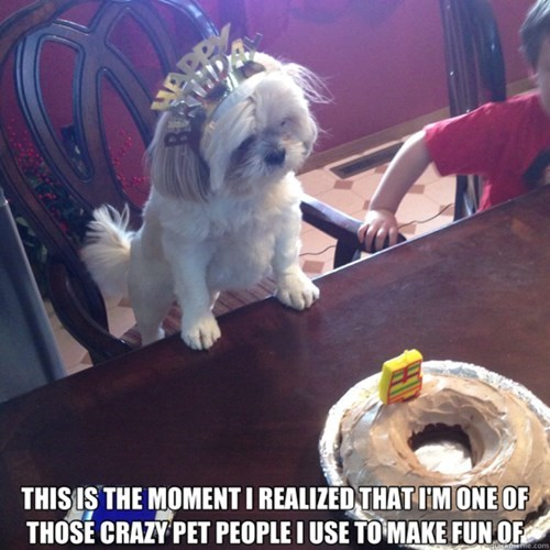 crazy birthday dogs funny welcome to the club - 8016352256