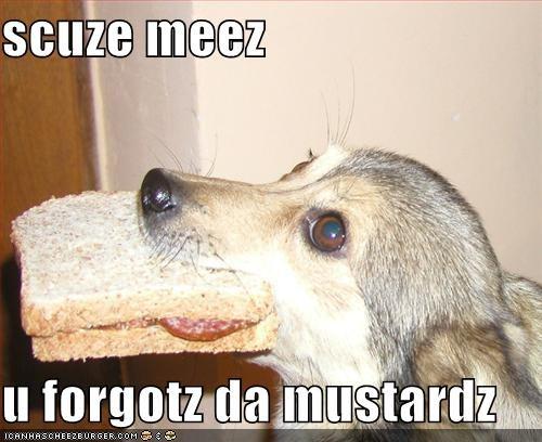 Cheezburger Image 801721600