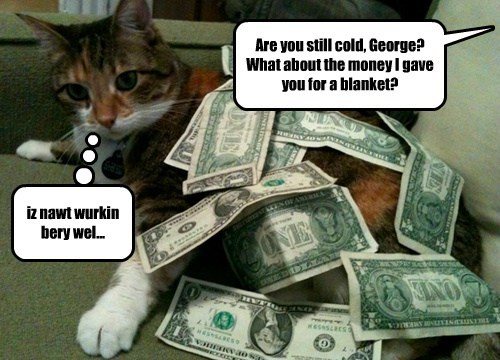 cash blanket Cats funny - 8017506048