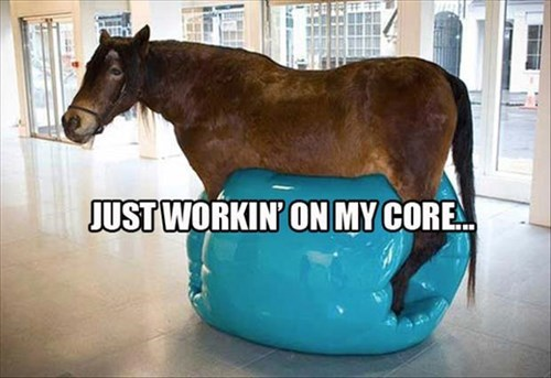core exercise funny horses workout