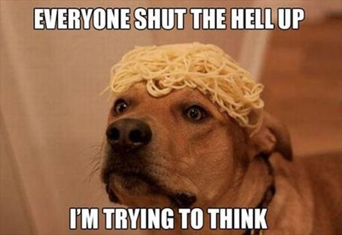 brain dogs funny puns think - 8017539840