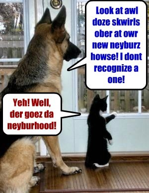 Look at awl doze skwirls ober at owr new neyburz howse! I dont recognize a one! Yeh! Well, der goez da neyburhood!