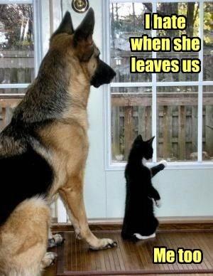 I hate when she leaves us Me too