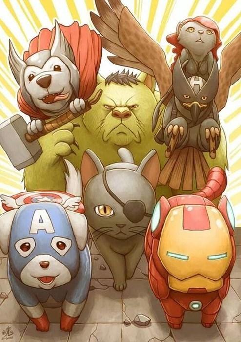 Cats animals avengers - 8018823424
