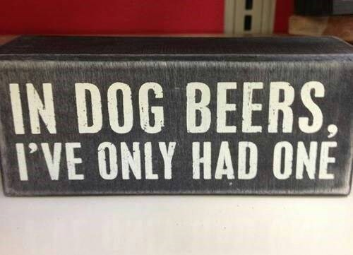 beer dog years drunk funny - 8020548096