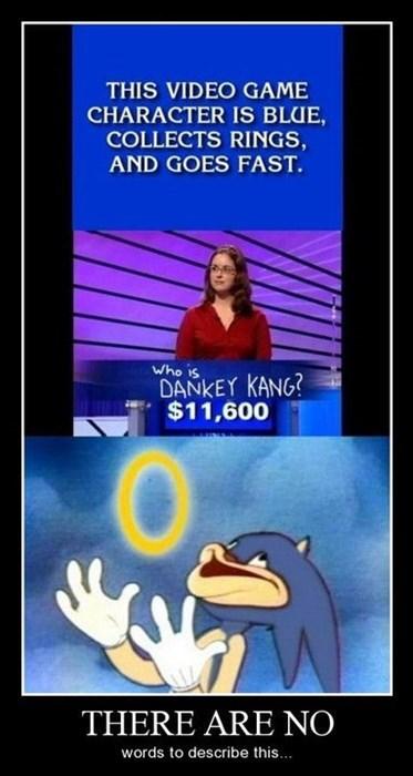 donkey kong,funny,idiots,wtf,sonic
