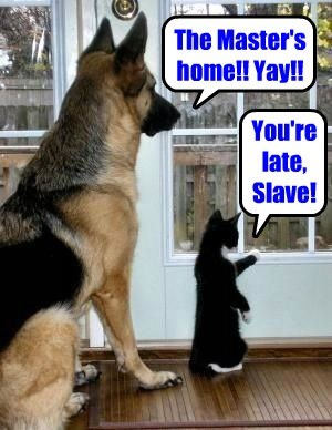 The Master's home!! Yay!! You're late, Slave!