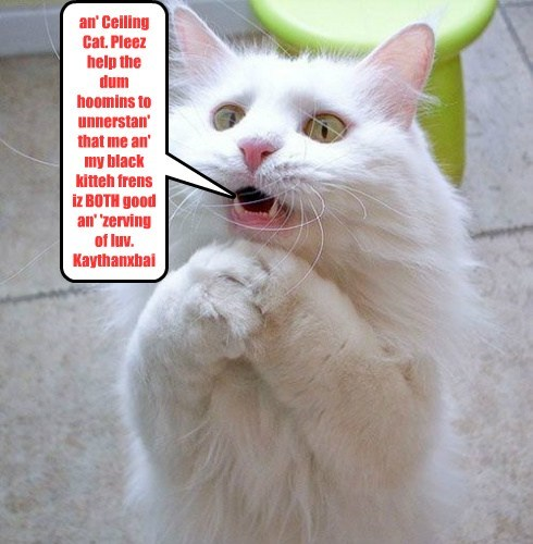 an' Ceiling Cat. Pleez help the dum hoomins to unnerstan' that me an' my black kitteh frens iz BOTH good an' 'zerving of luv. Kaythanxbai