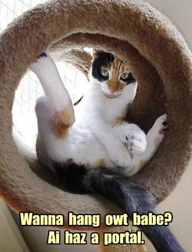 ICHC Bad Pickup Lines - Lolcats - lol   cat memes   funny cats