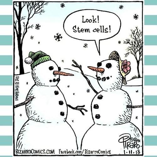 comics snow funny stem cells snowman - 8023917568