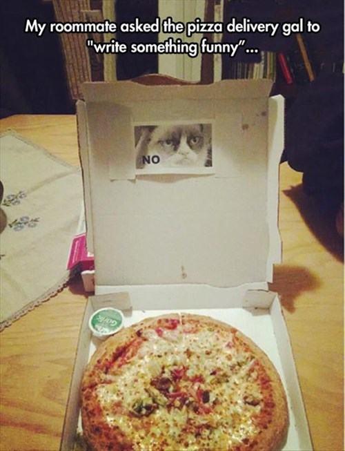 Grumpy Cat,pizza,work,no,delivery