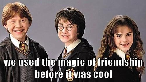 friendship is magic Harry Potter inspirational - 8025177600