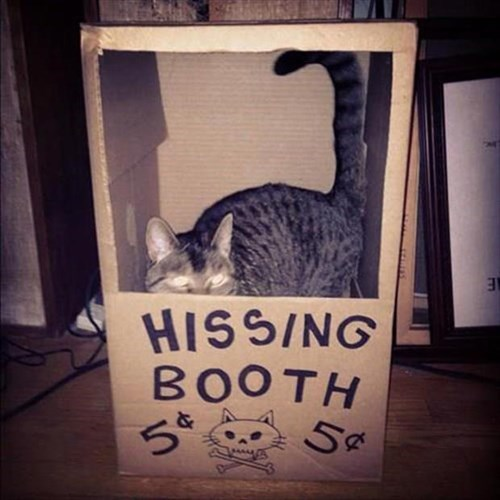 It Costs Five Cents to Get Near Her Booth!