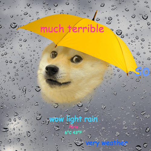 weather,doge,dogeweather