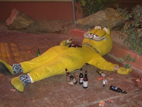 costume beer cat lazy garfield funny - 8026191104