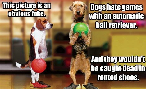 dogs,fake,bowling,funny