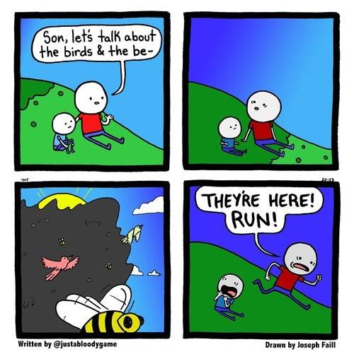 birds run bees web comics - 8026519296
