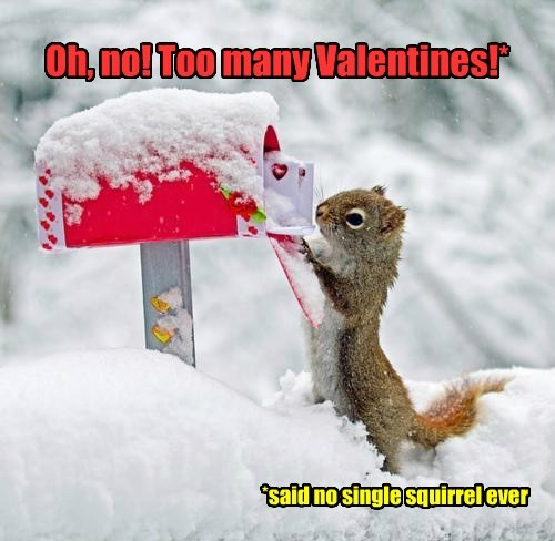 cute snow mail squirrels Valentines day - 8026758144