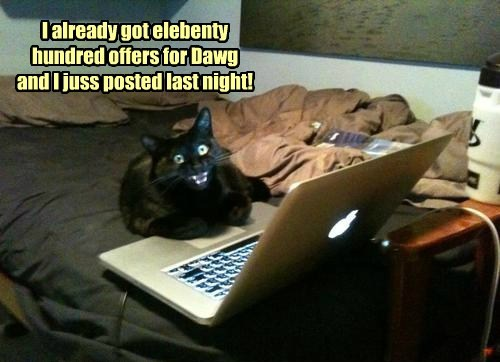 Funny cat meme of a cat that appears to have sold the dog on Craigslist.