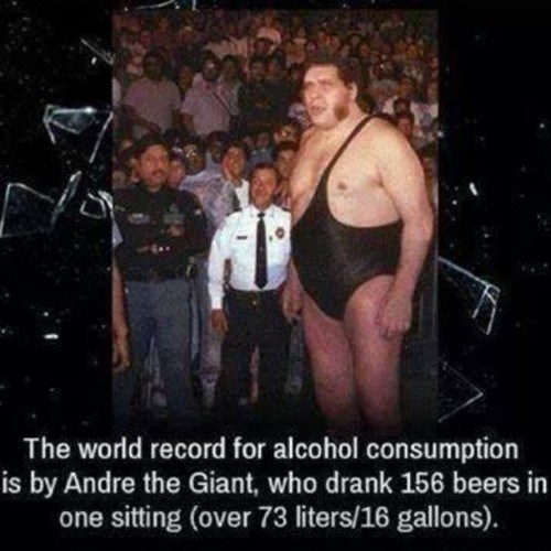 beer booze drinker andre the giant funny - 8028680448