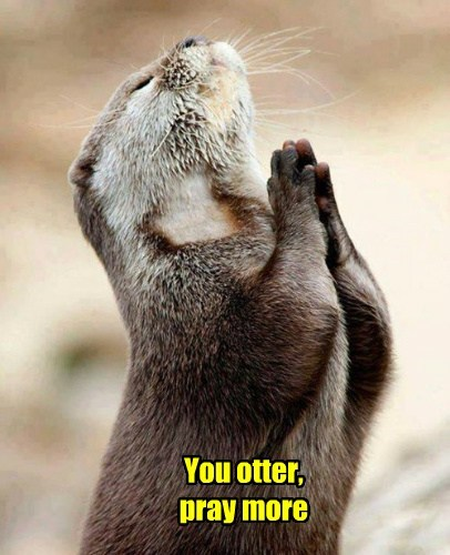 You otter, pray more