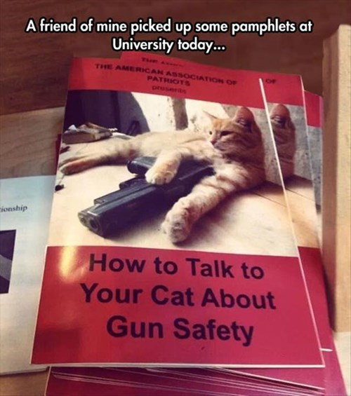 Cats,funny,gun safety,pamphets