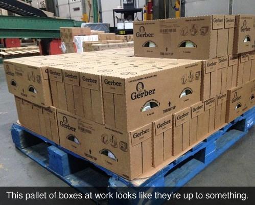 boxes,gerber