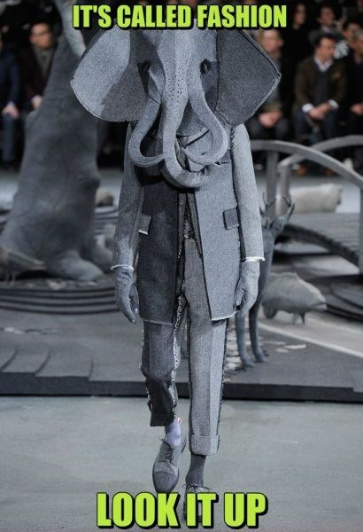 elephants fashion show poorly dressed - 8029887744