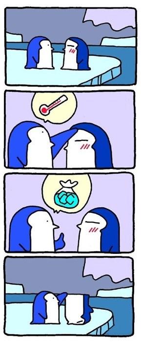 medicine penguins winter web comics - 8029930240