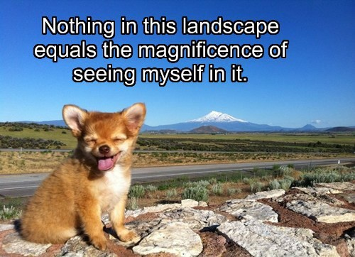 Nothing in this landscape equals the magnificence of seeing myself in it.