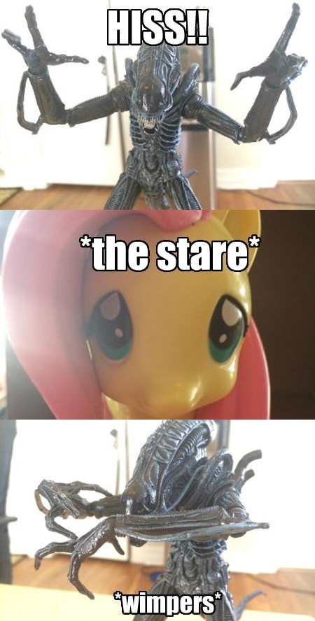 xenomorph,alien,fluttershy,action figure