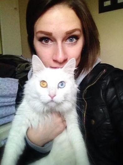 eyes cute Cats funny - 8030360832