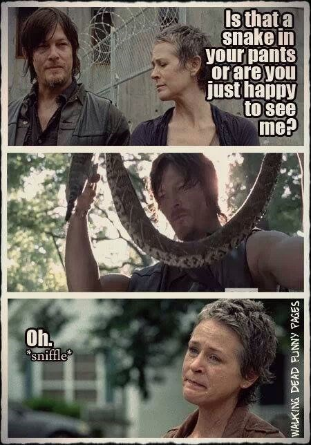 daryl dixon are you just happy to see me carol peletier - 8030413824
