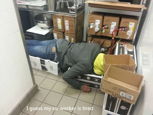 coworkers naps monday thru friday work - 8031568384