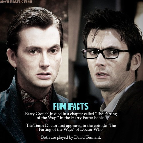 10th doctor David Tennant Harry Potter Fun Fact - 8031633408