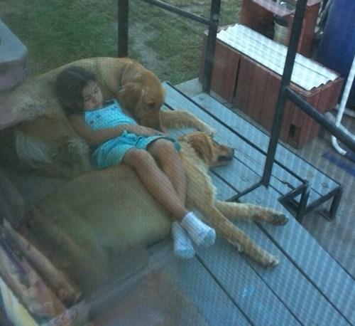 dogs nap snuggle kids love