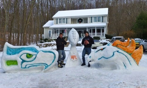 snow the Big Game winter football - 8031869952