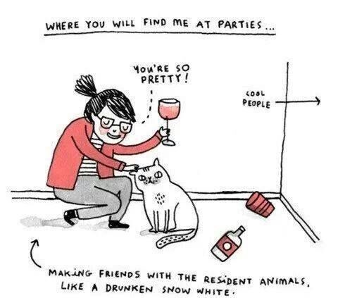 cat animals comics funny Party wine - 8031950336