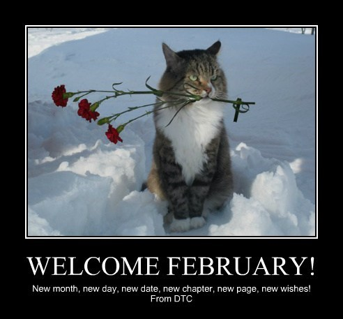 WELCOME FEBRUARY! New month, new day, new date, new chapter, new page, new wishes! From DTC