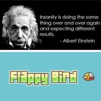 flappy bird einstein - 8033739264